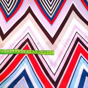 GAsa geometrica multicolor (1)